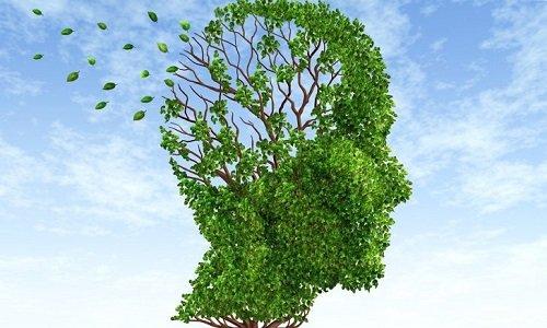 Деменция или забывчивость?